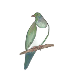 Team logo - Kererū